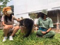 Royal Safari Garden Berikan Edukasi Satwa Melalui Tayangan Live Streaming di Sosmed