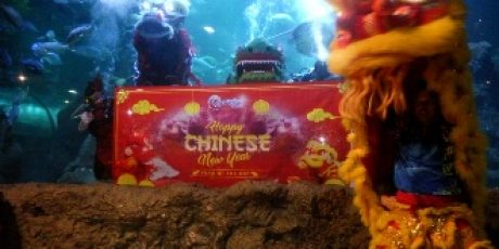 Ancol Lunar Festival Hadirkan Imlek Seru Tebar 2571 Angpao