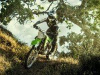 Di Juni 2019, KMI Tawarkan KLX230R Untuk Off Road dan Dirt Bike