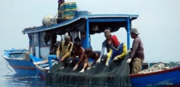 Cuaca Ekstrim, Harga Tongkol di Singkawang Naik