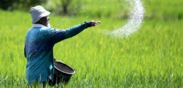 Tingkatkan Kesadaran Petani Dengan Penggunaan Pupuk Organik