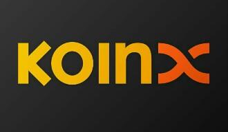 Platform Koinx, Permudah Layanan Melalui Aset Digital